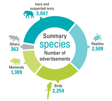Share of online adverts worldwide [IFAW]