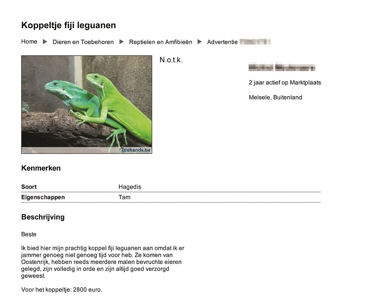 Dutch online advert for reptiles [IFAW]