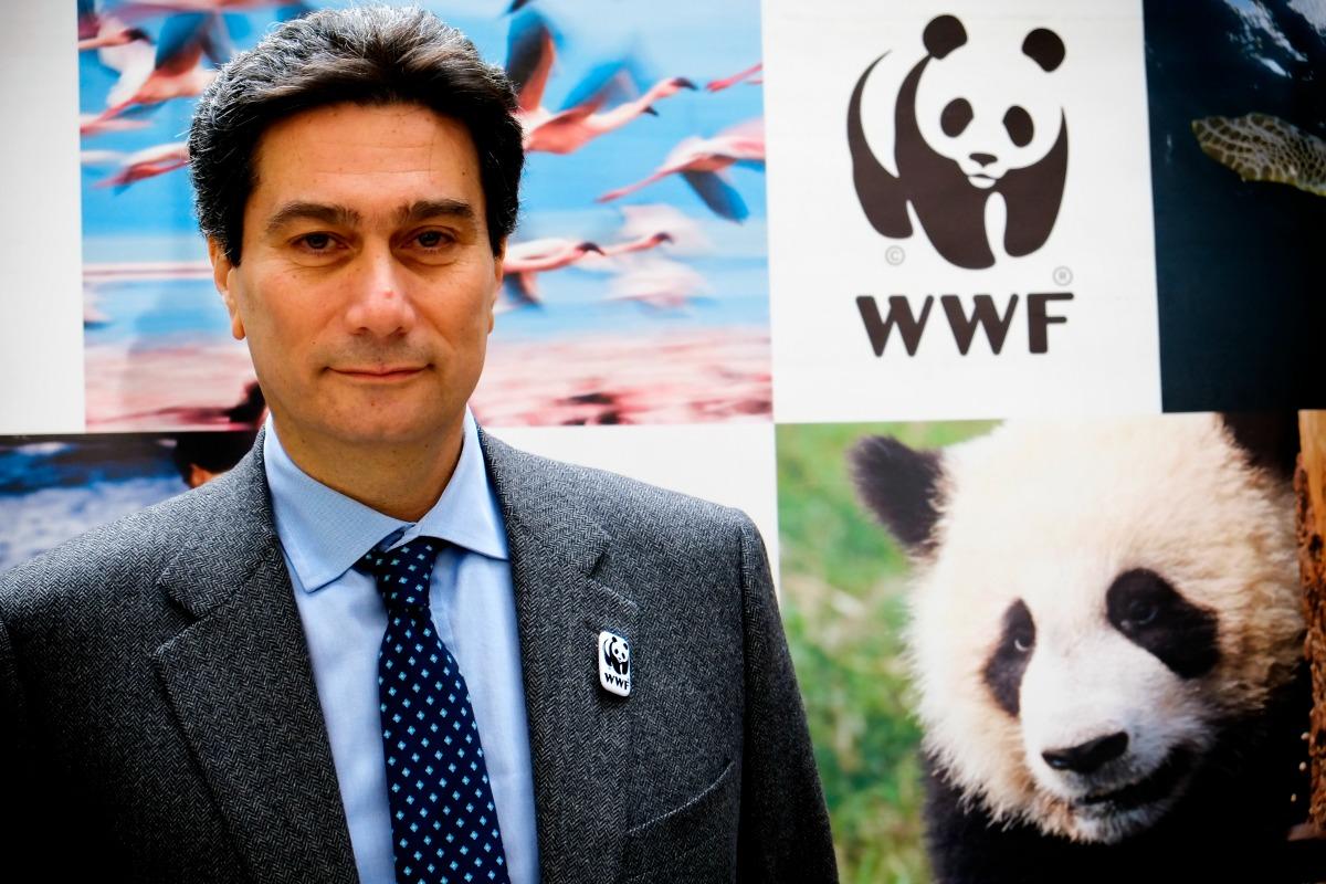 Luigi Epomiceno [WWF]