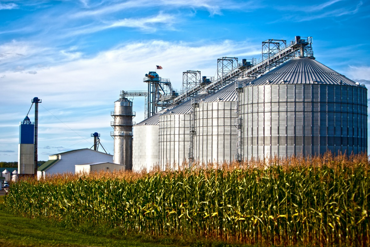 Corn dryer silos