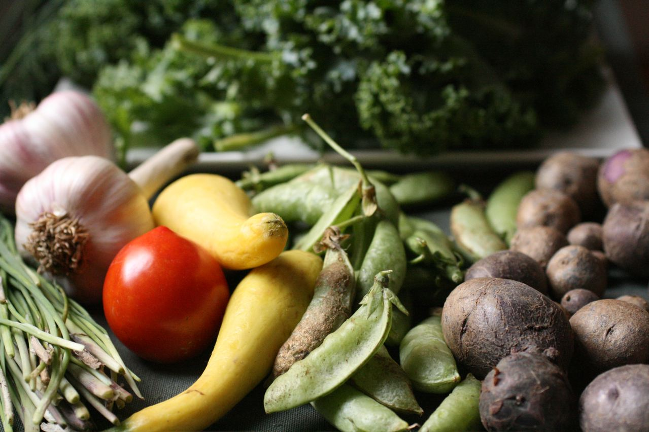 Organic Farmers Could Feed The World Euractiv Com