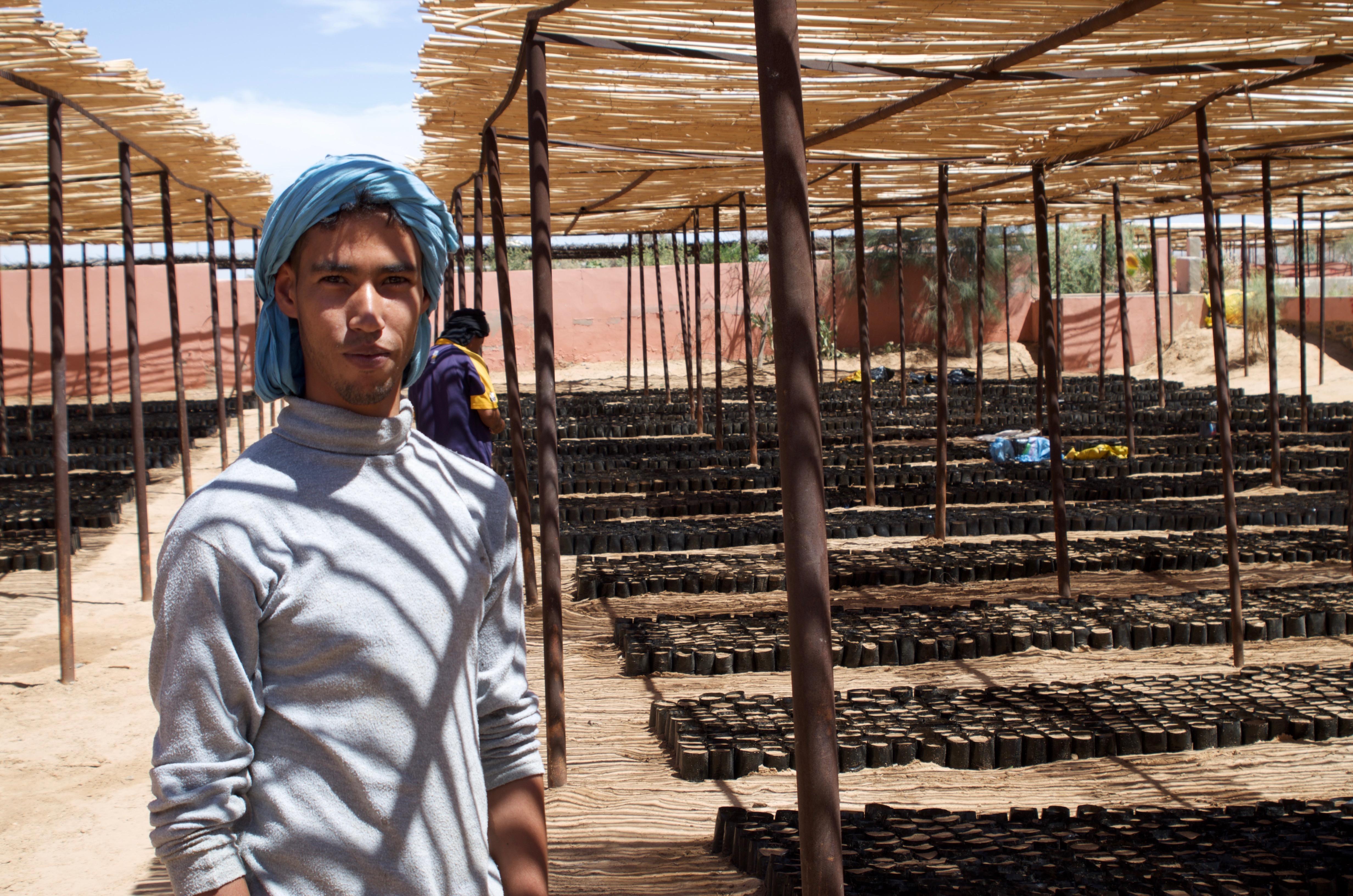 A Sahrawi farmer in Smara city.